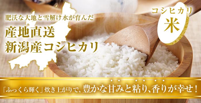 産地直送、新潟産コシヒカリ。肥沃な大地と雪解け水が育んだお米。