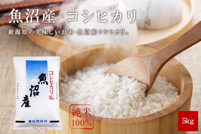 魚沼産コシヒカリ 5kg(5kg×1袋)
