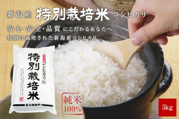 新潟産コシヒカリ 特別栽培米5kg(5kg×1袋)