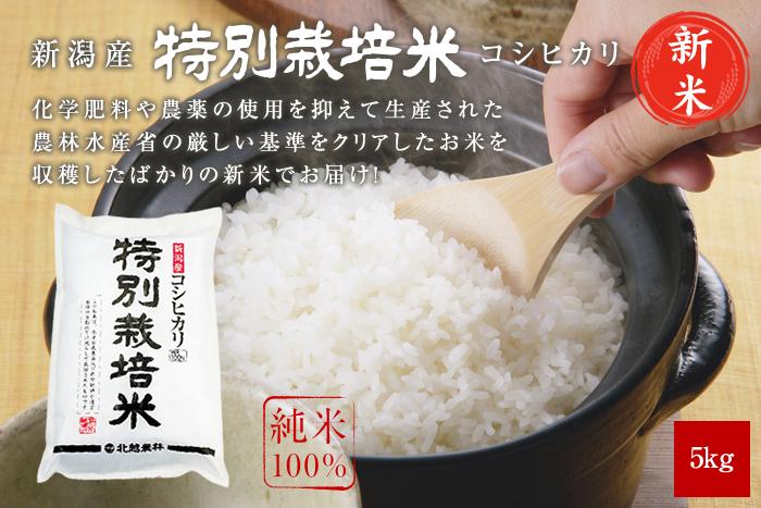 新米 新潟産コシヒカリ 特別栽培米5kg(5kg×1袋)